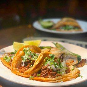 carnitas tacos